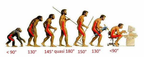 evoluzione della specie angolo anca